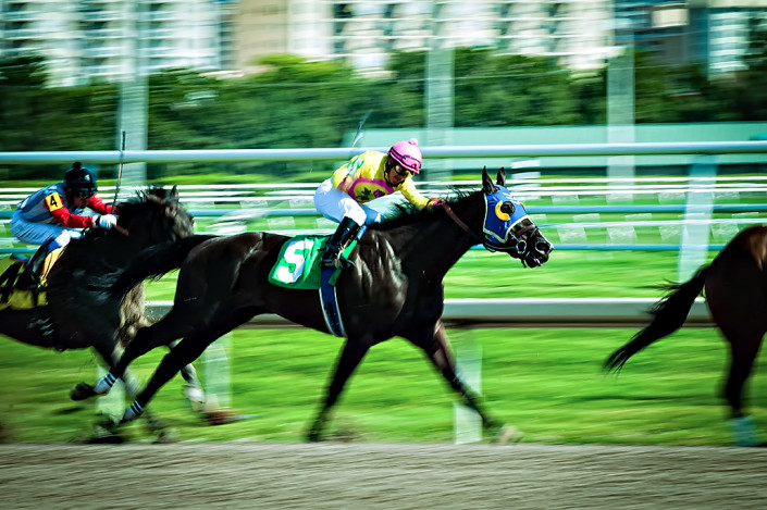 Horses jockeying for position down the stretch at Gulfstream Park Racing