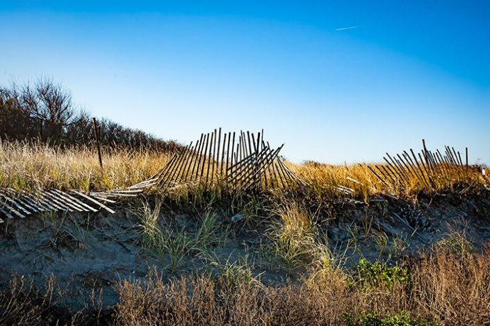 fence along the beach