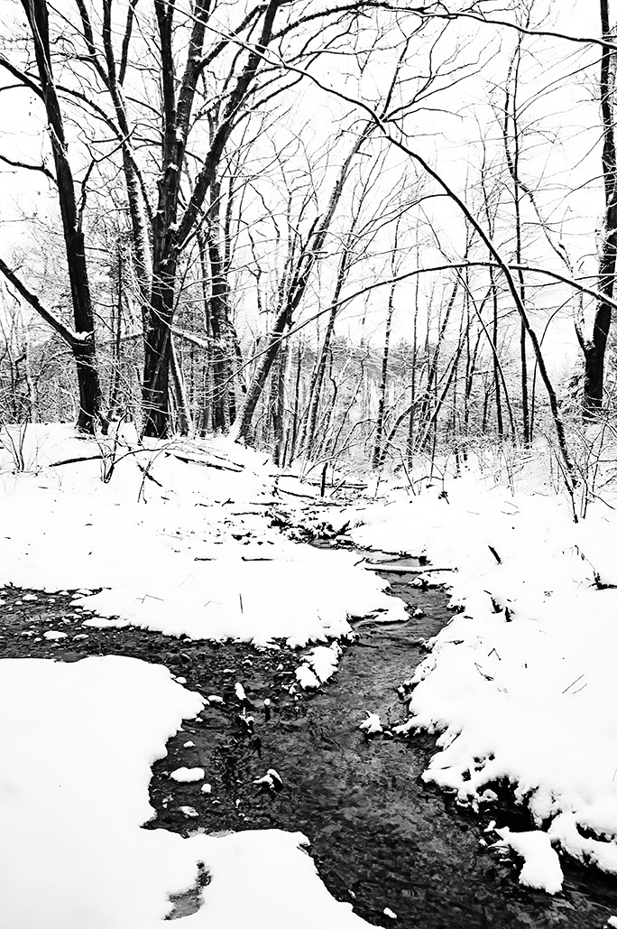Winter's creek